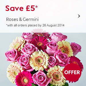 Save £5 on our Roses & Germini