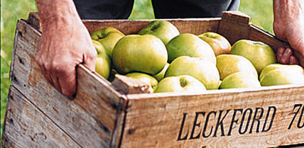 wrgeneral-leckford-farm-apples-428x209-2col