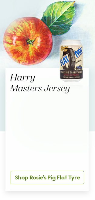 Harry Masters Jersey
